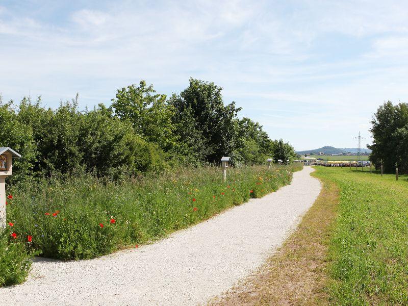 Blick Richtung Berngau